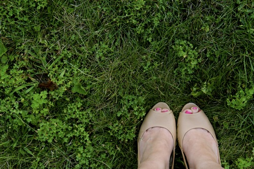 Job-Seekers_Is_The_Grass_Really_Greener-3