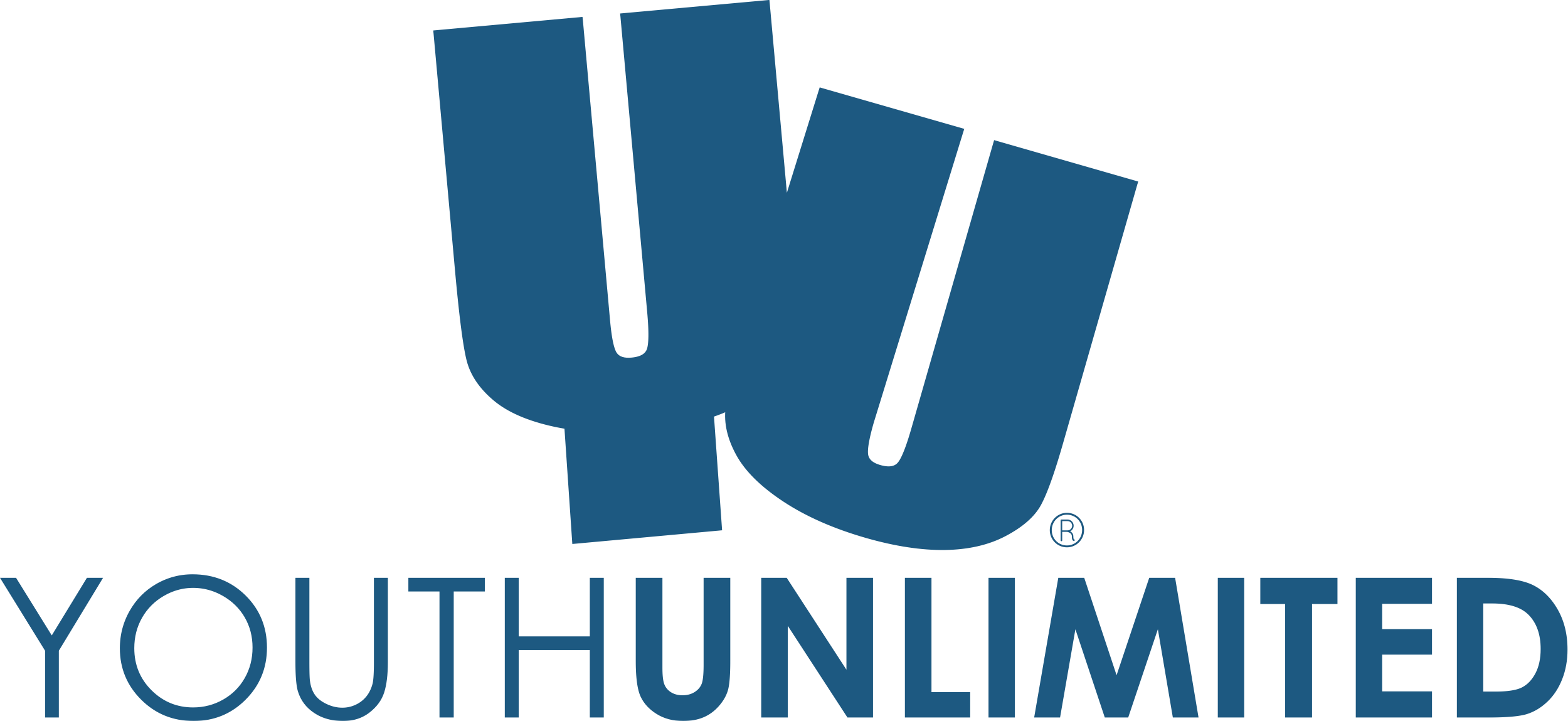 Youth Unlimited - Executive Director